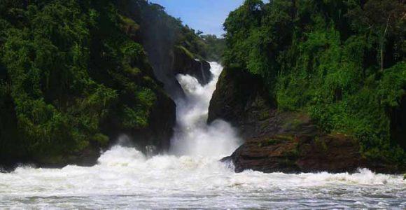 7 Days Jinja Tour, Gorillas & Murchison falls Safari
