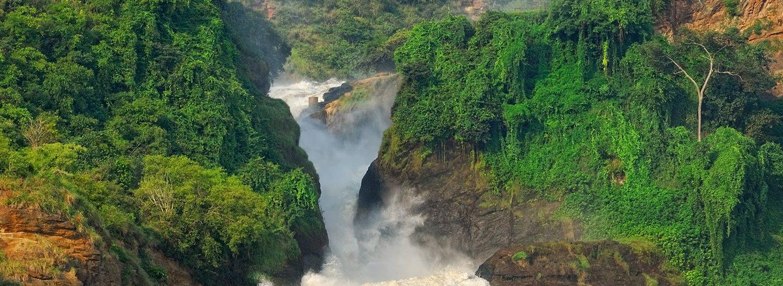 8 Days Uganda Gorillas & Murchison falls Safari