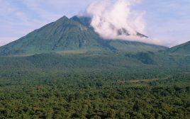 3 Days Karisimbi Hiking Rwanda
