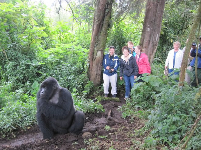 packing list for Gorilla trekking in Uganda